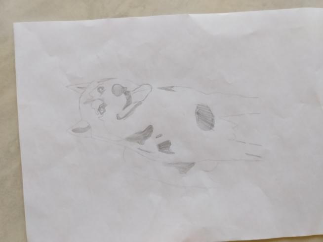 Ein Bild zum Beitrag Zeichne