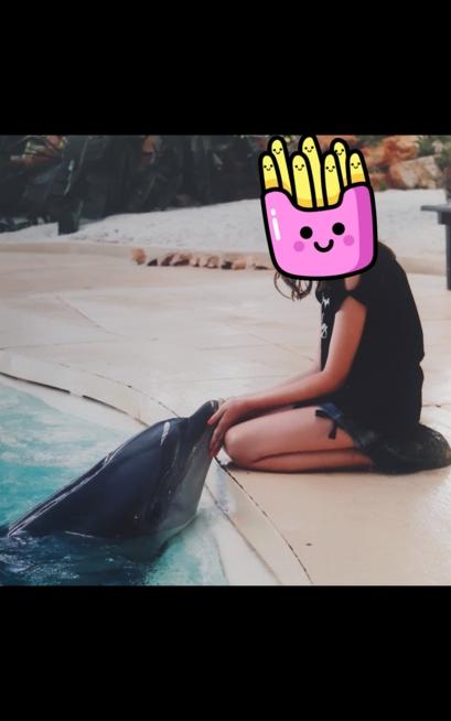 Ein Bild zum Beitrag Delfin ❤🐬🐋🐙