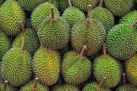 Ein Bild zum Beitrag Durian
