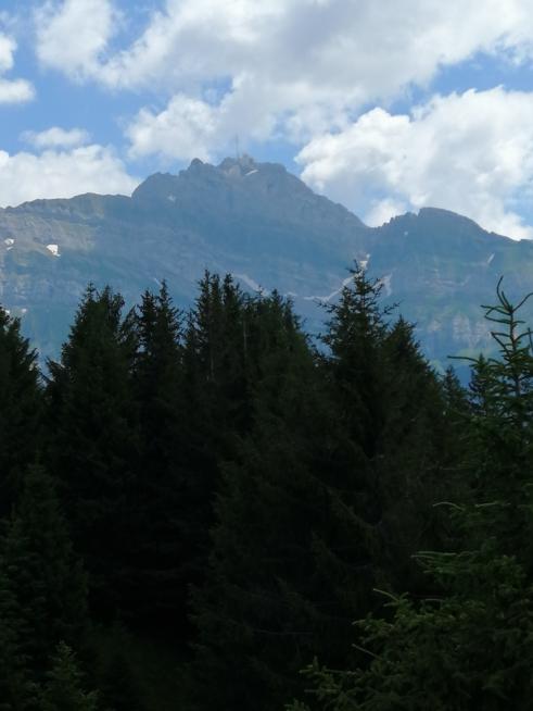 Ein Bild zum Beitrag Fotis vo dä Zambo Gipfel Challange