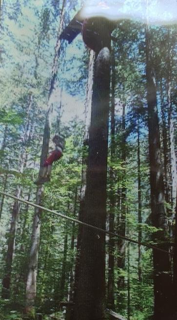 Ein Bild zum Beitrag Freefall im Kletterpark