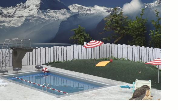 Ein Bild zum Beitrag Piiiep Pool