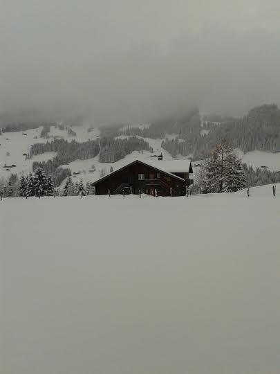 Ein Bild zum Beitrag winter