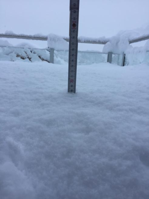 Ein Bild zum Beitrag Schnee juhe