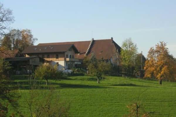 Ein Bild zum Beitrag Ferien auf dem Bauernhof
