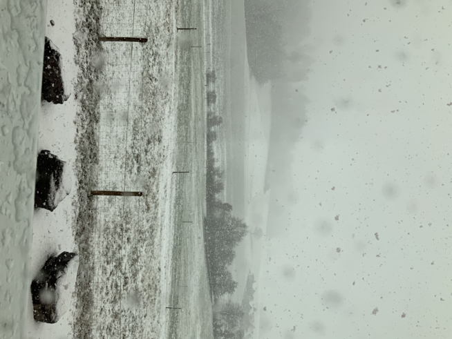 Ein Bild zum Beitrag Schnee